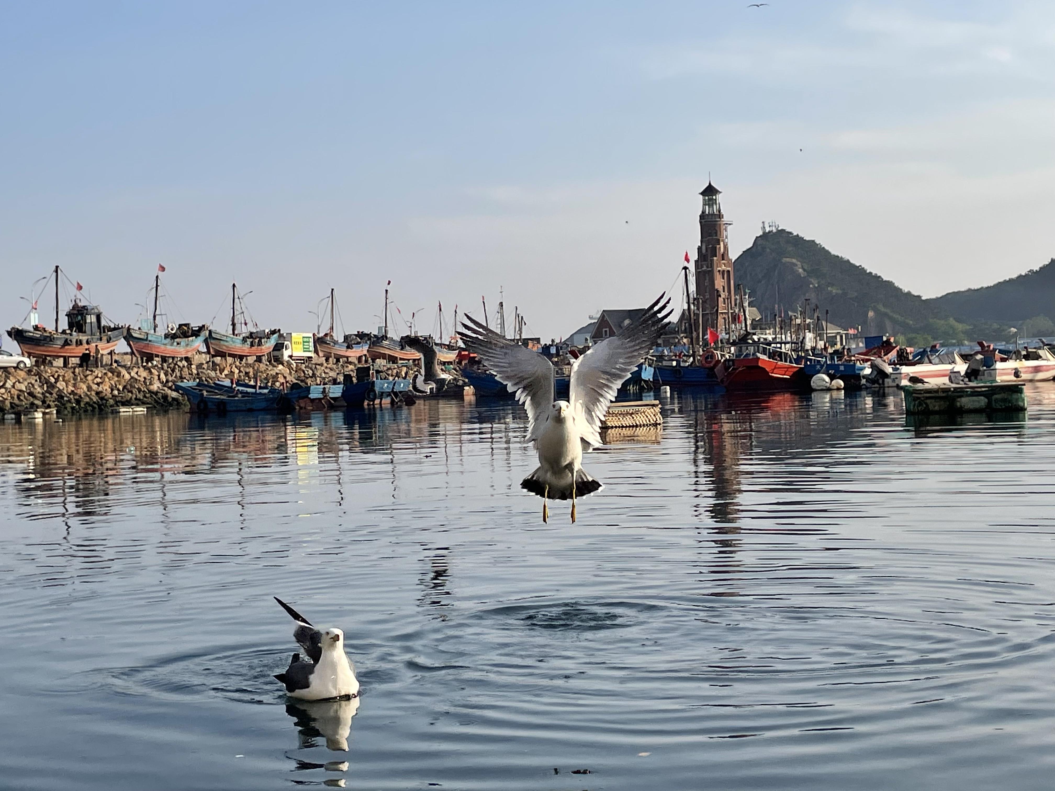 大连-渔人码头