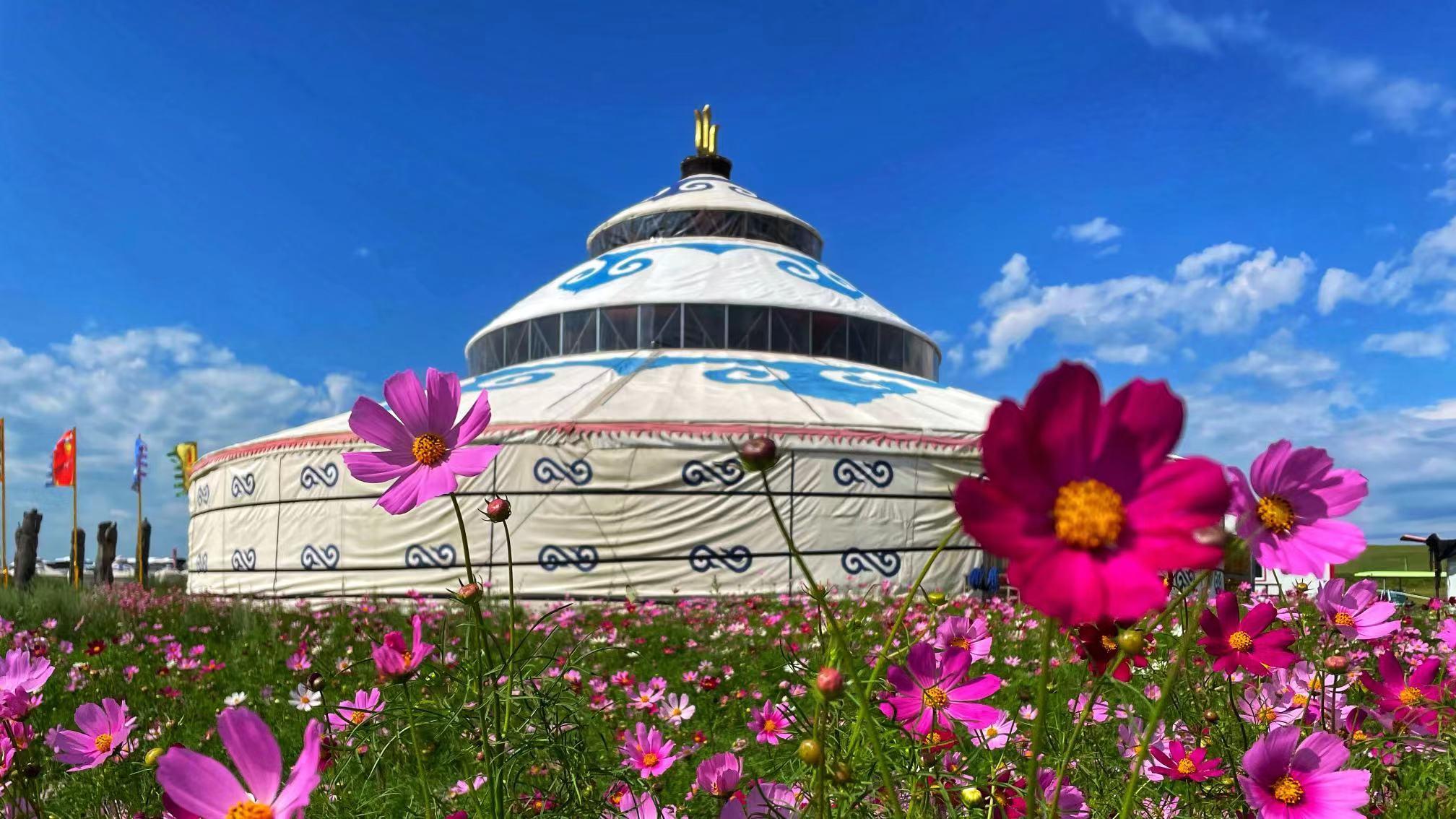 呼伦贝尔-花前蒙古包